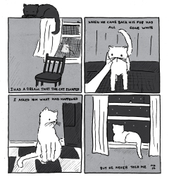 Mariel Kelly catcomic01